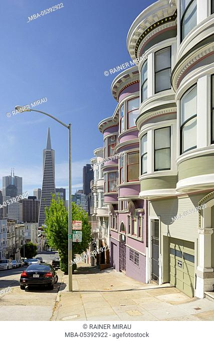 Montgomery Street, Transamerica Pyramid, Telegraph Hill, San Francisco, California, USA