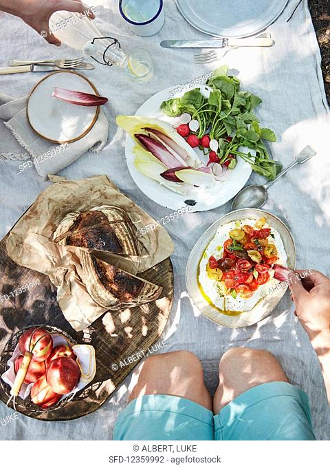 Labneh ricotta dip with tomatoes and herbs