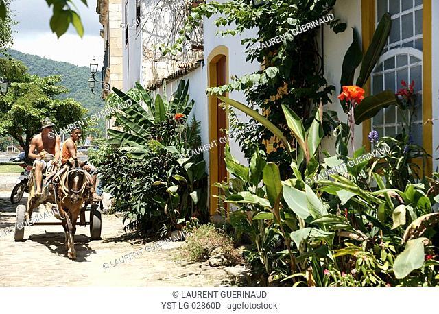 Coach, Plants, Paraty, Rio de Janeiro, Brazil