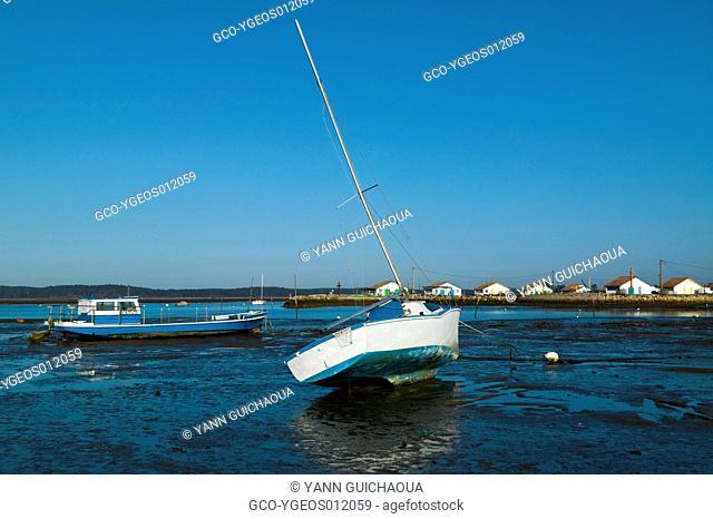 ArÞs, Arcachon Bay, Gironde Aquitaine, France