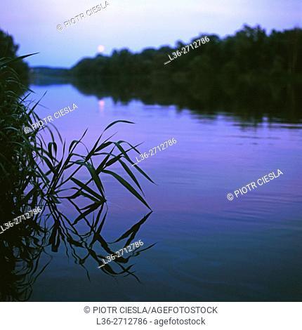 Moon rise on Bug river. Poland. Podlasie region