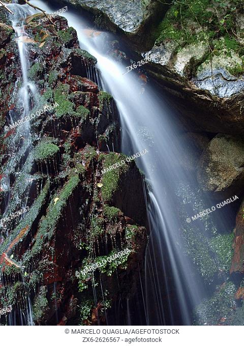 Salt del Diable waterfall at Arbucies village countryside, detail. Montseny Natural Park. Barcelona province, Catalonia, Spain