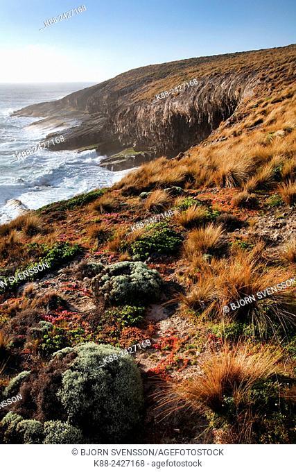 Cape Du Cuoedic on Kangaroo Island, South Australia