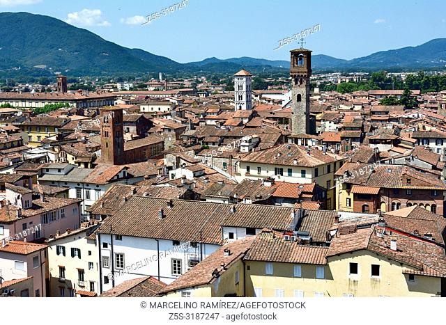The medieval town of Lucca seen from the viewpoint on the top of Guinigi Tower. Lucca, Province of Lucca, Tuscany, Italy, Europe