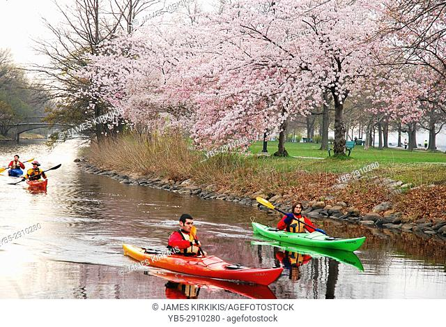 Spring Kayaking in Boston's Esplanade