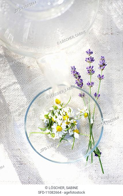 Camomile and lavender