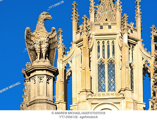 Close up detail with stone sculpture of an eagle on St Johns College, Cambridge University, England