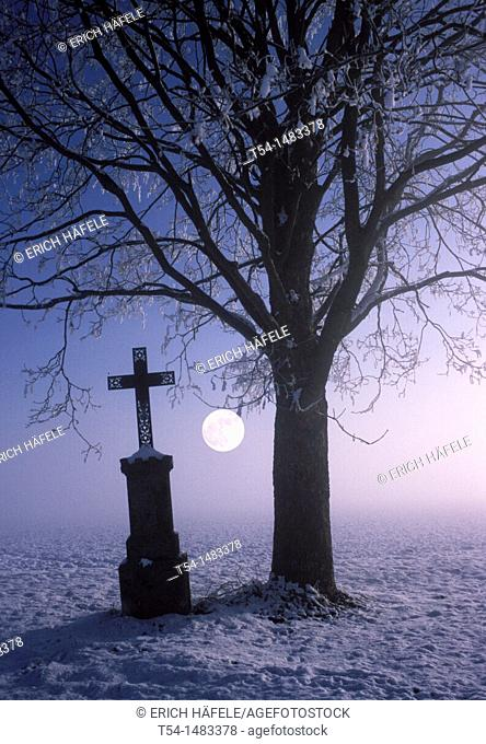 Cross beside a bare tree on a cold full moon night