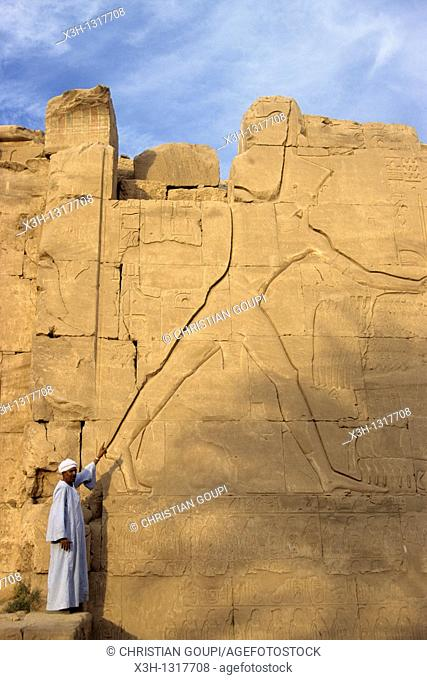 guide showing a carving of Thutmose III on the Seventh Pylon, Karnak, Luxor, Thebes, Egypt, Africa
