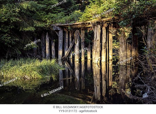 Old Wooden Bridge near Port Renfrew, Vancouver Island, British Columbia, Canada