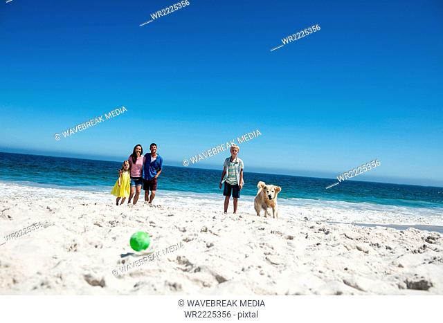 Cute family throwing ball at dog