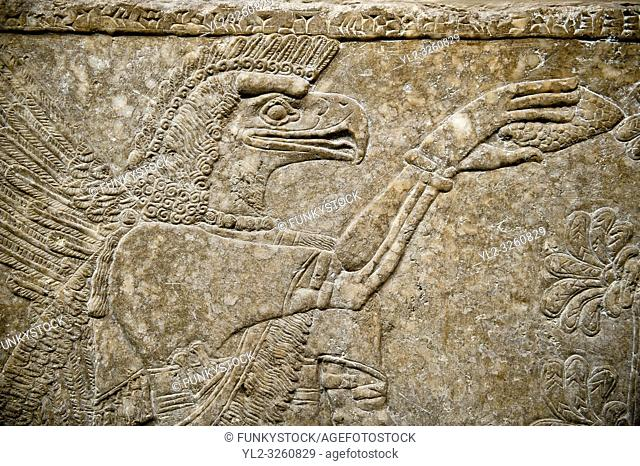 Assyrian relief sculpture panel of an eagle headed protective spirit from Nimrud, Iraq. The spirit is holding a symbolic fir cone and is sprinkling holy water