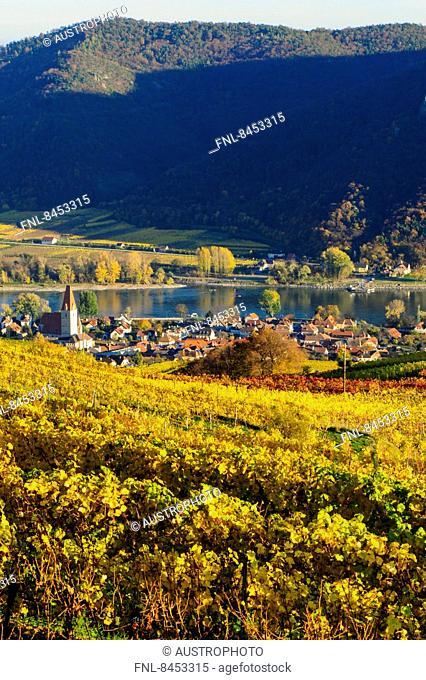 Weissenkirchen in the Wachau in autumn, Austria