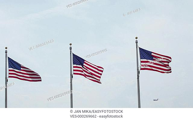 Flags of the United States of America flying in wind, Washington DC, USA