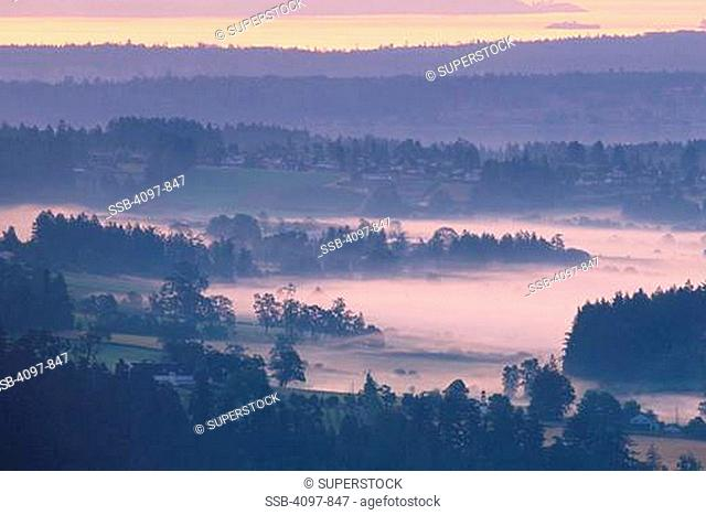 Farm covered with fog, Saanich Peninsula, Vancouver Island, British Columbia, Canada