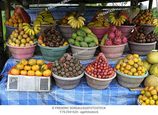 Exotic fruits at a tropical fruit farm,Bali,Indonesia