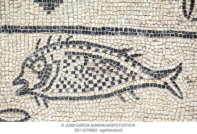 Baritto pond mosaic depicting dolphins and breams. National Museum of Roman Art in Merida, Spain
