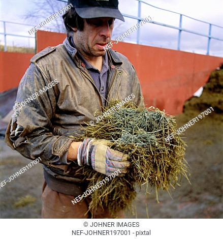 Man holding bunch of dry twigs and grass
