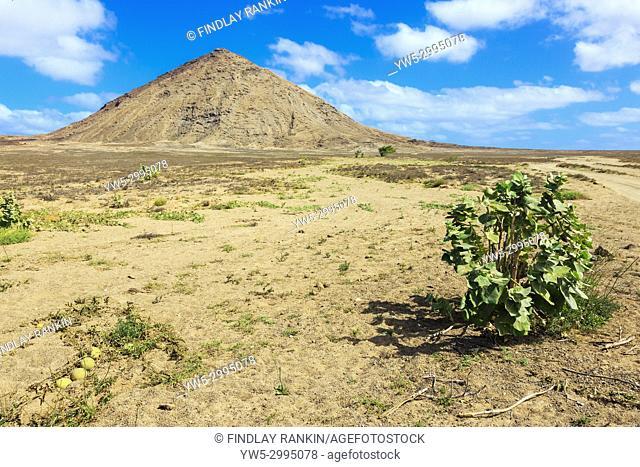 Monte Leste mountain on Terra Boa desert, Sal Island, Salinas, Cape Verde, Africa