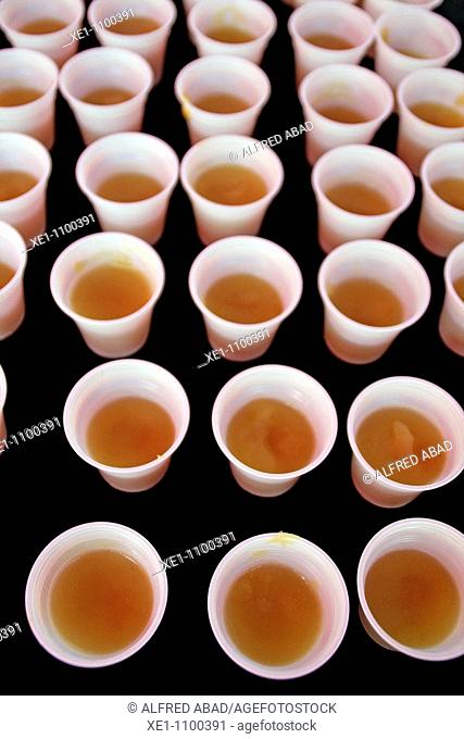 Plastic cups, infusion of tea