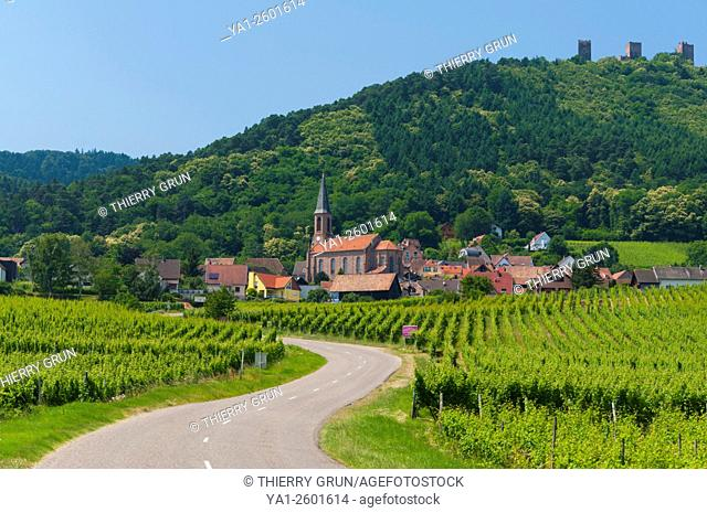France, Haut Rhin (68), Wine road, Husseren-les-chateaux