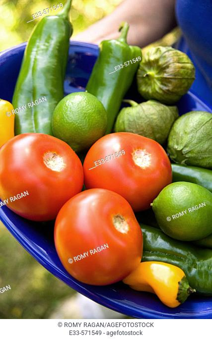 Plate of fresh vegetables: tomatoes, tomatillos, limes, peppers. Mexican cuisine