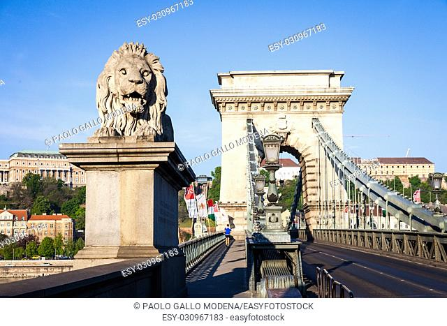 Iconic symbol of Budapest - the statue of the lion at the beginning of the famous Chain Bridge