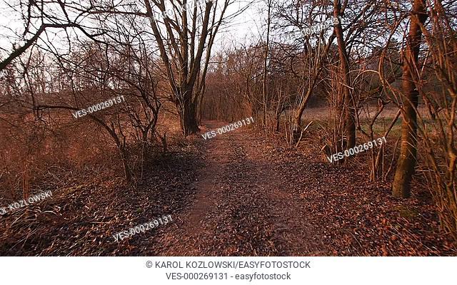 Walking through the Polish Rural Road near Lublin, Poland