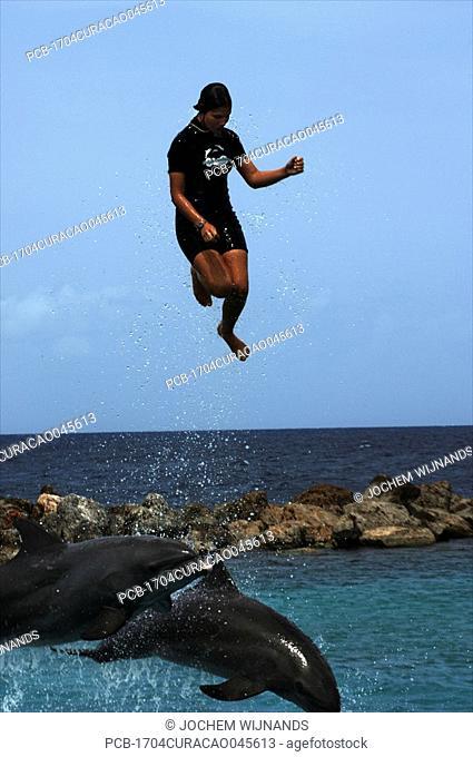 Curacao, Dolphin show at Dolphin academy