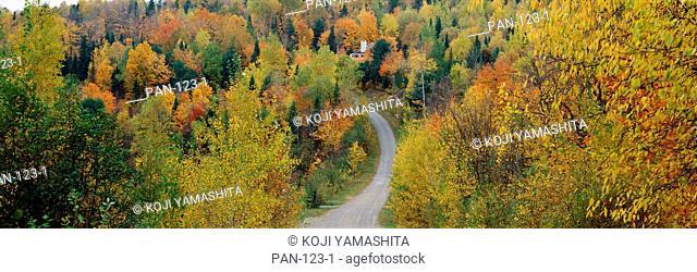 Road near Saint-Sauveur, Laurentides, Quebec, Canada