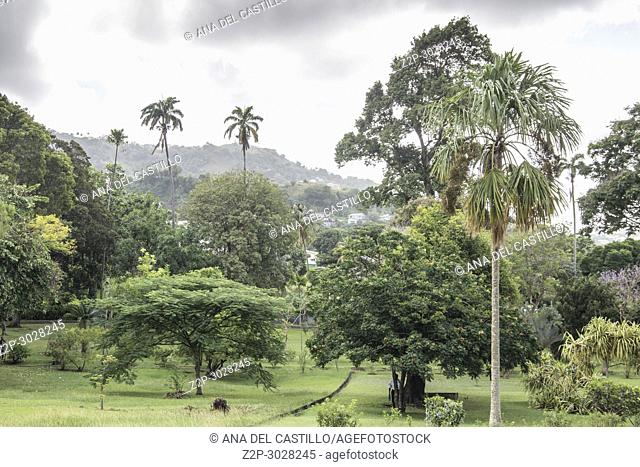 The St Vincent and the Grenadines Botanic Gardens is located in Kingstown