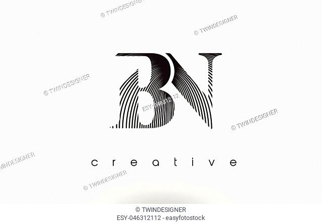 BN Logo Design With Multiple Lines. Artistic Elegant Black and White Lines Icon Vector Illustration