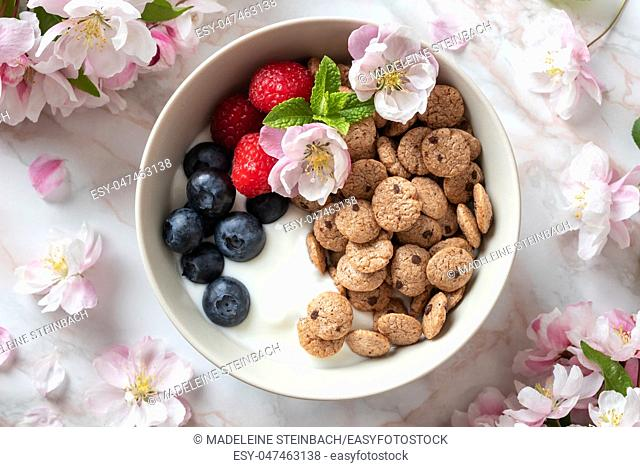 Breakfast cereals with yogurt, blueberries, raspberries and spring blossoms