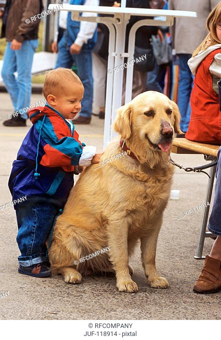 infant with Golden Retriever
