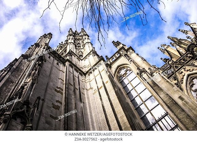 Cathedral Basilica of St. John the Evangelist, 's-Hertogenbosch, the Netherlands, Europe
