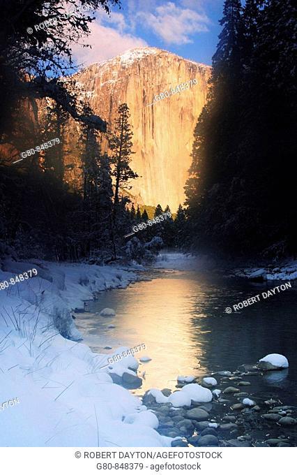 El Capitan reflects in the Merced River in Yosemite NP