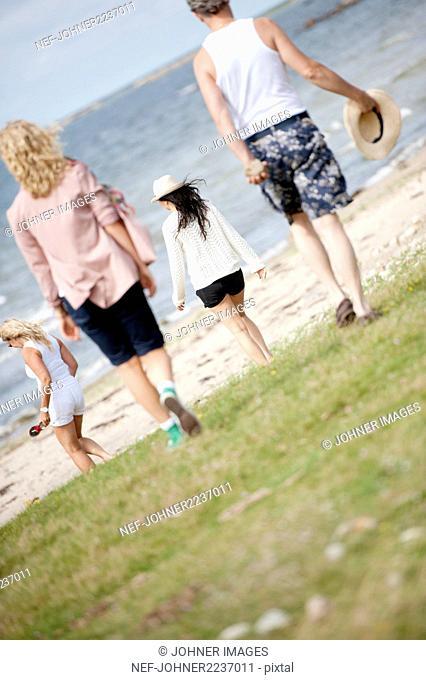 Group of friends walking towards sea