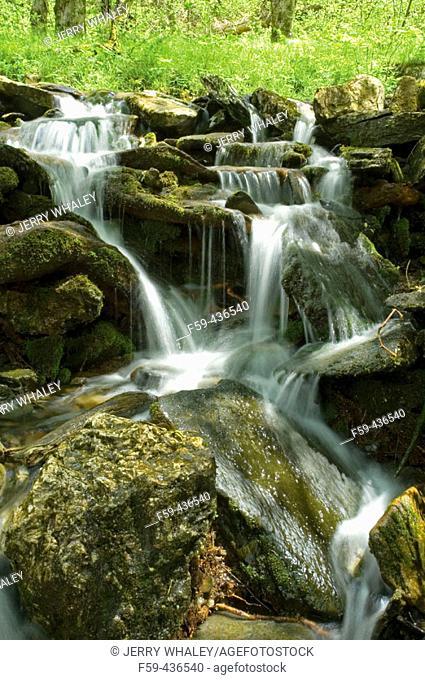 Small Waterfall, Newfound Gap Road, Great Smoky Mtns Nat. Park, TN