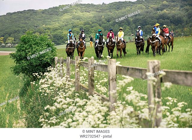 Group of riders on racehorses grouped on the race course, in a row. Waiting for the start