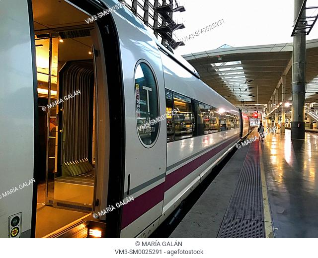 AVE high-speed train at platform. Puerta de Atocha railway station, Madrid, Spain
