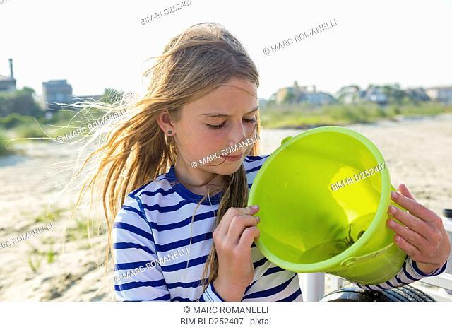 Caucasian girl holding crab in bucket on windy beach
