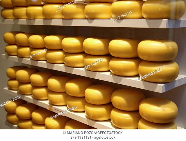 Cheese shop in Amsterdam, Netherlands, Europe