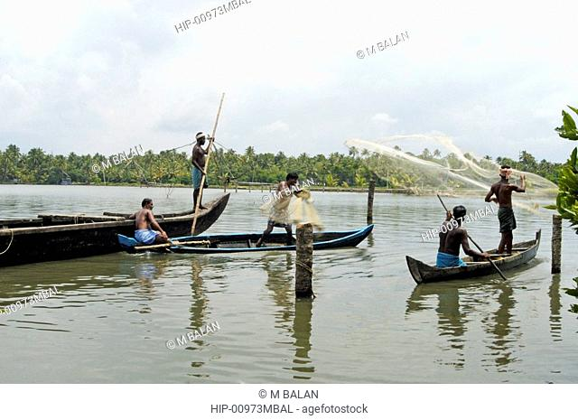 ROUND THROW-NET FISHING, KUMBALANGHI NEAR KOCHI