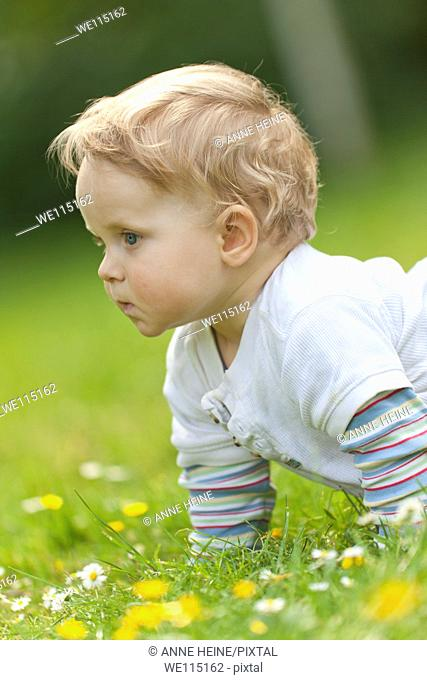 baby crawling on grass with flowers