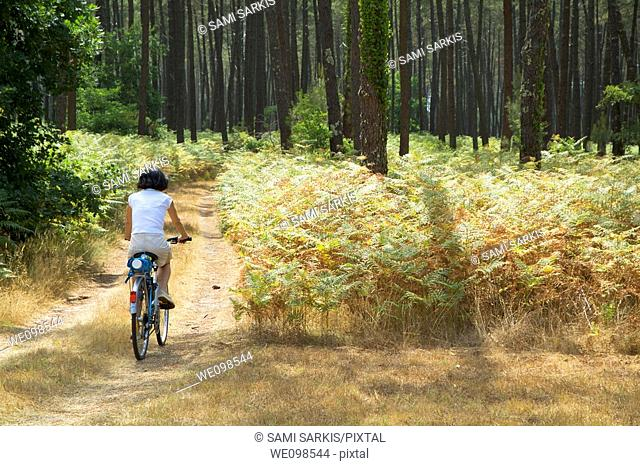 Woman mountain biking alone through Landes Forest, Aquitaine, France