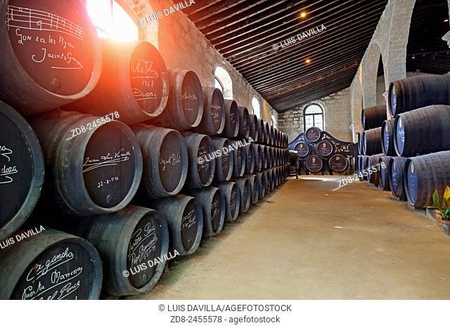 gonzalez byass wine cellar