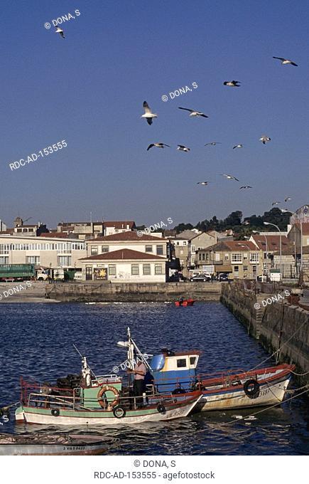 Cambado Rias Baixas Galicia Spain