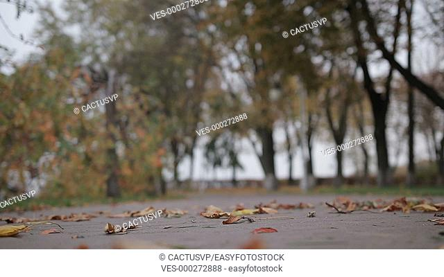 Gentle kiss of young romantic couple in autumn day
