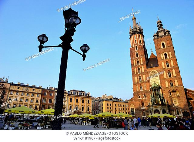 Main square or Rynek: Cathedral of Our Lady of Saint Mary in Krakow, Poland