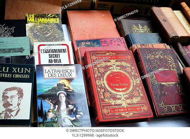 Paris, France, Shopping, Flea Market, French Language Collectible Books on Display in Public Market, Cour de Vincennes
